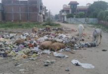 A pile of garbage in the ward of Ambah, waste being dumped by municipal staff