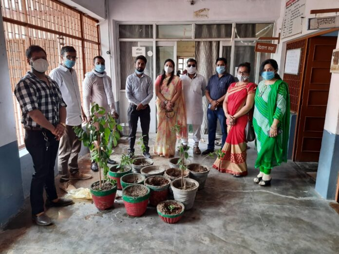 Realizing Green and Naveen Agra, the organization fulfilled the resolution of 1 lakh tree planting
