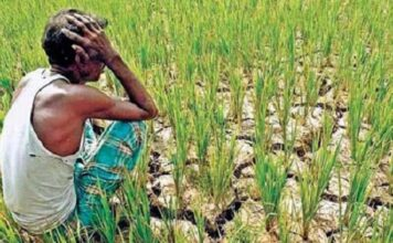 Fraud with farmers in the name of crop insurance scheme, deposited premium up to Rs 600 / ha and in return Rs 2
